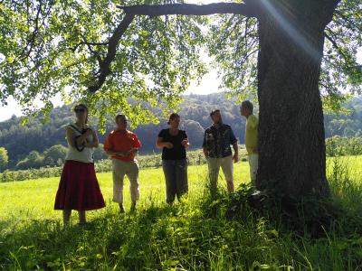 Bodensee, Radiästhesie, Rutengehen, Wasserader, Baum, Seminarteilnehmer