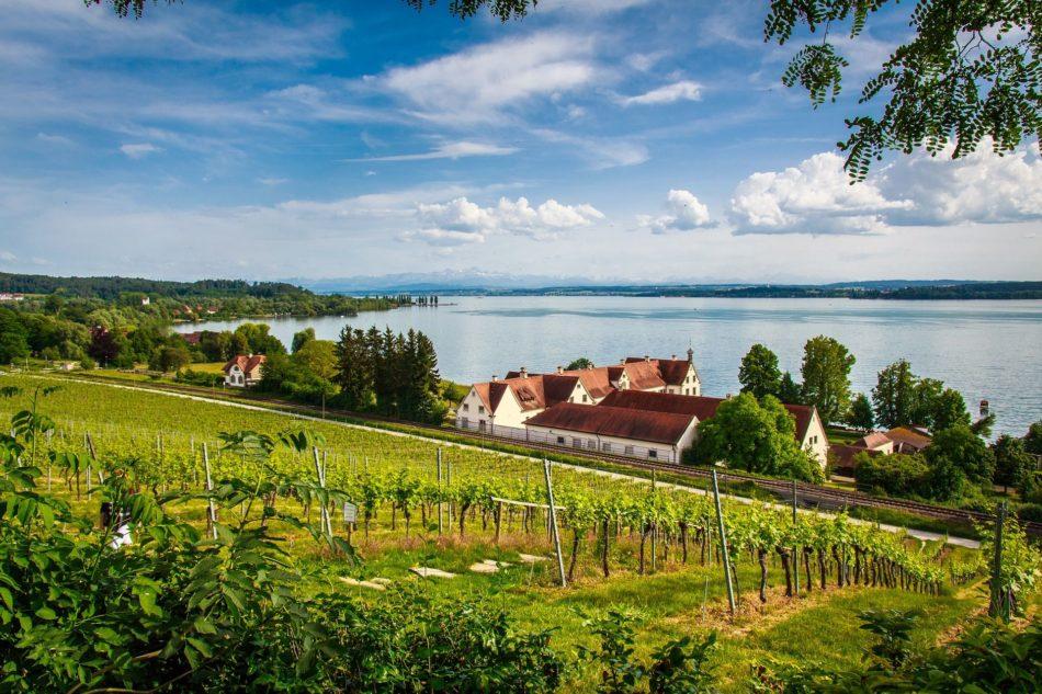 Bodensee, Kloster Birnau, Radiästhesie, Rutengehen, Hartmann-Gitter, Curry-Gitter, Benker-Kuben-System